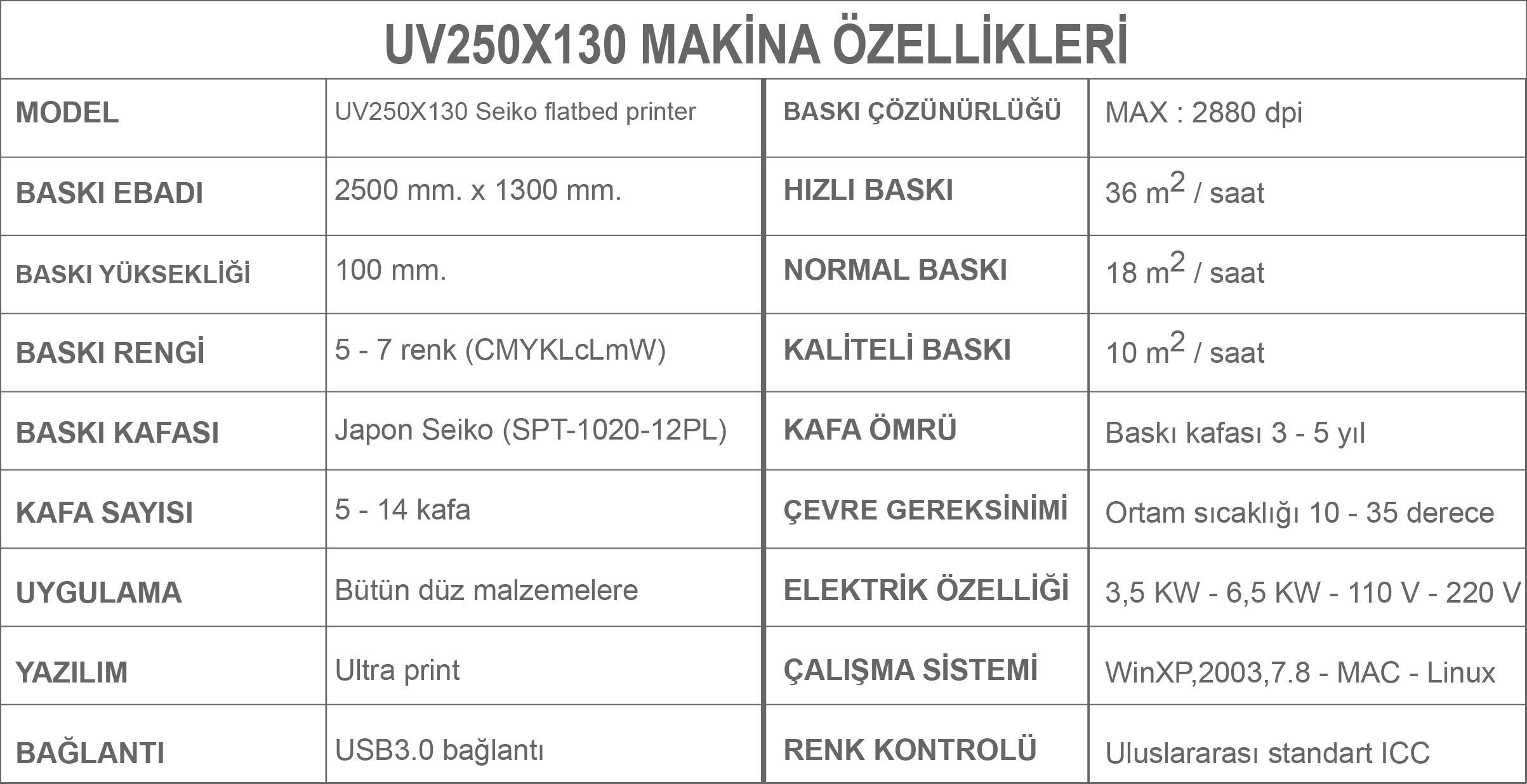 UV250X130 BASKI MAKİNA